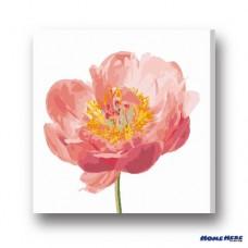 數字油畫  粉色綻放