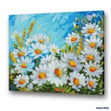 數字油畫 清秀雛菊