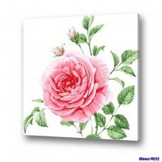 數字油畫 清新薔薇