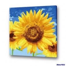 數字油畫 向陽晴空