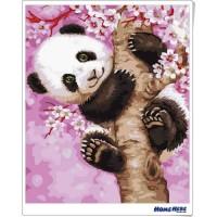 數字油畫 櫻花熊貓