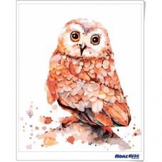 數字油畫 水彩貓頭鷹
