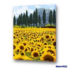 數字油畫 向日葵 和平