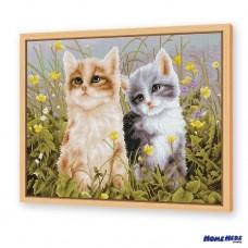 鑽石畫 兩隻貓咪