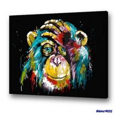 數字油畫  幻彩猩猩