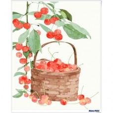 數字油畫 小清新 櫻桃