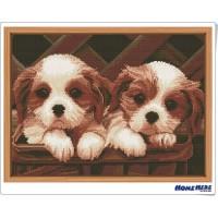鑽石畫 兩隻小狗