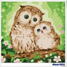 數字油畫 貓頭鷹 溫暖親情